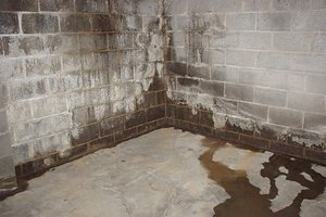 Get Rid Of The Odor Just Gone Systems Musty Basement Odor Removal In Flint Mi